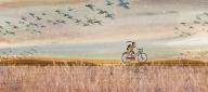 Charming Children's Illustrations by Jaime Kim