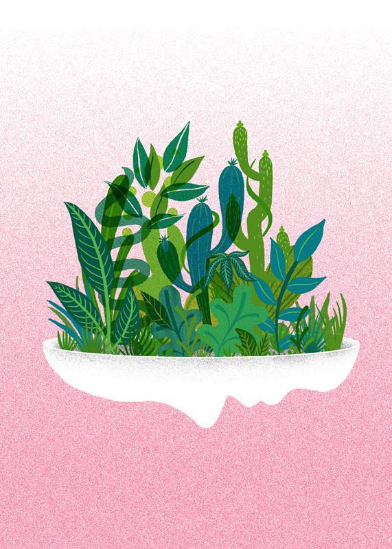 planter_c_571