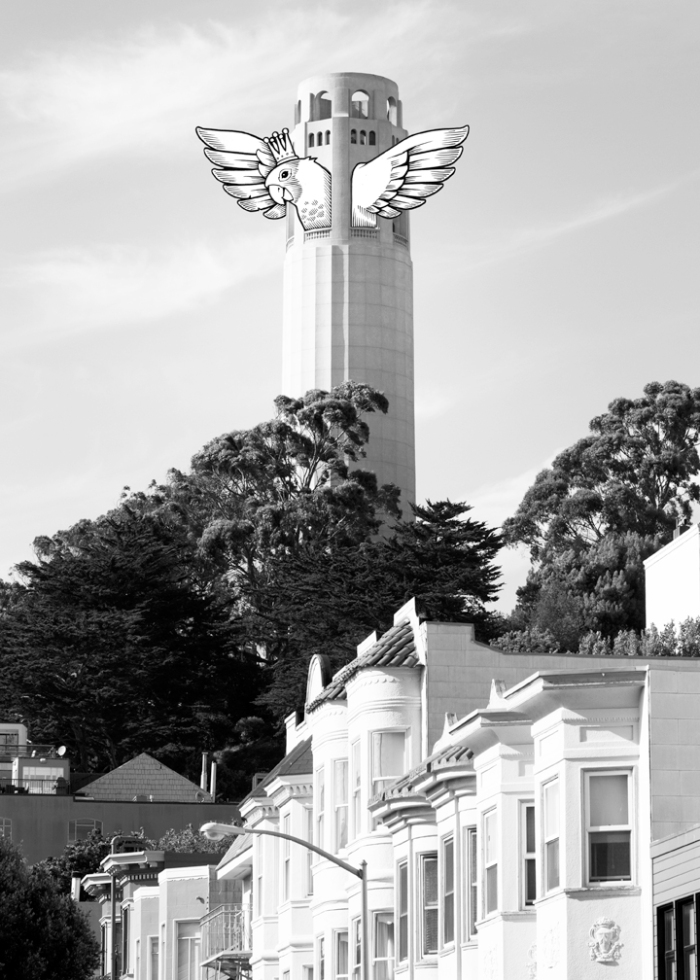 san-francisco-sightseeing-capsule-by-jeremy-fish-upper-playground004