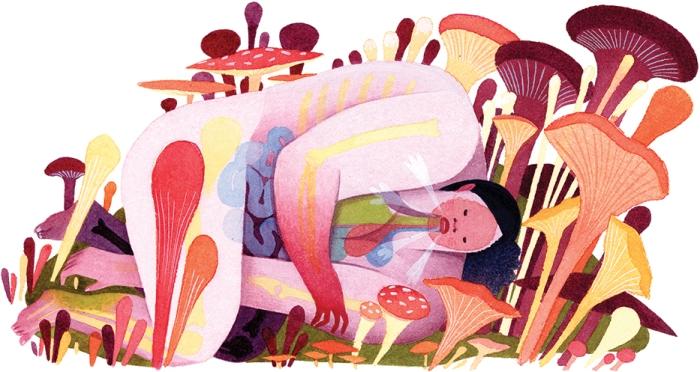 Davis-NYT-Mushrooms-300