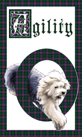 old_english_sheepdog__agility_by_allisonsohn-d4al1hj