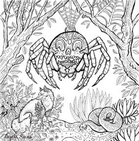 9077230782d03de5-spider